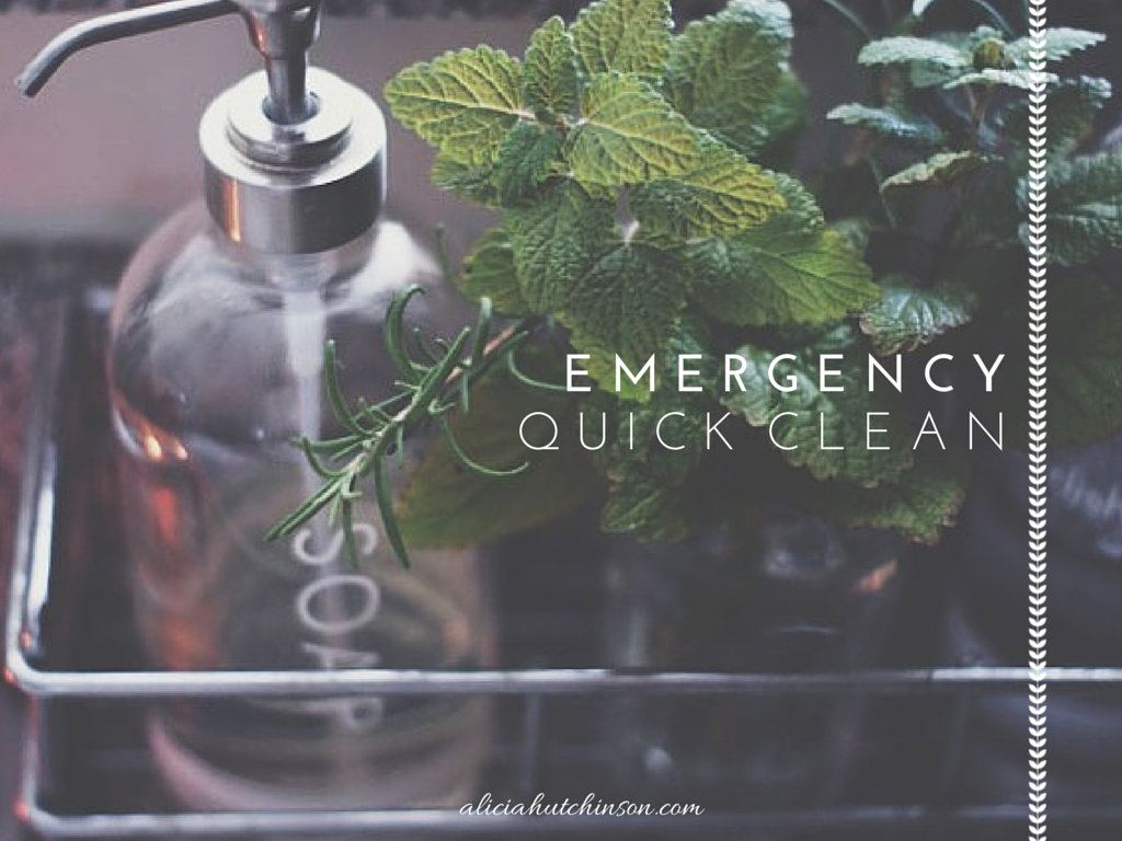 emergency quick clean