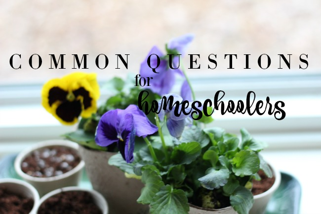 """Homeschoolers are a different breed and a lot of the """"outside world"""" has questions for us! Here's some honest answers for common questions for homeschoolers."""