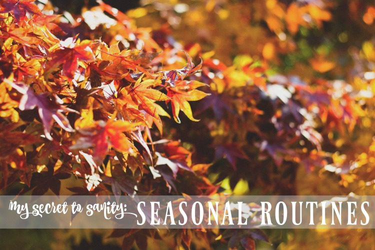 Want to know my secret to staying sane as a homeschooling mom of four kids? Seasonal routines. Here's what I mean...