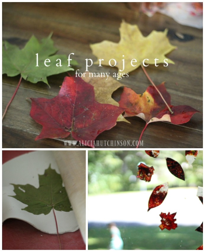 Fall leaf projects for many ages.