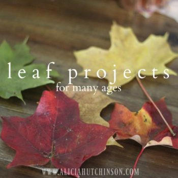 Leaf projects for multiple ages.