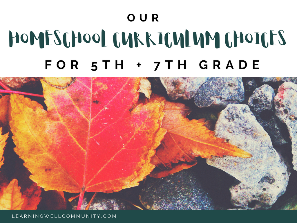 It's that time of year when everyone wants to know what curriculum choices you've picked! Here's our homeschool curriculum choices 5th and 7th grades