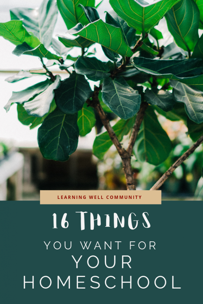 I'd never say to spend your money frivolously, but there's just things you want for your homeschool! Here's a fun list of things you might want!