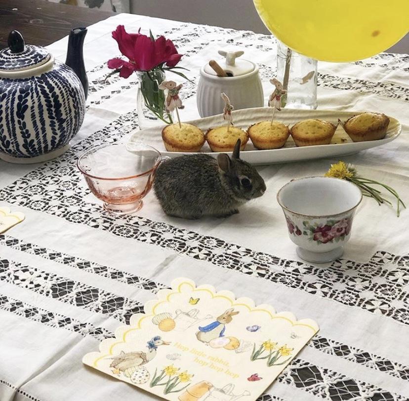 Tea Time Kara